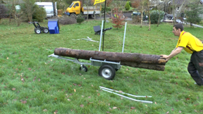 Arb Trailer with long length of timber